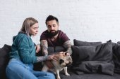 tattooed couple palming pet on sofa at home