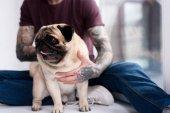 levágott kép a tetovált ember átölelve mopszli otthon