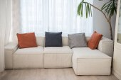 Couch with pillows of different colors and plant beside in modern living room