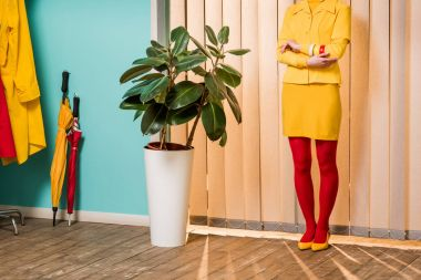 partial view of retro styled woman standing at ficus plant in flowerpot at colorful apartment, doll house concept