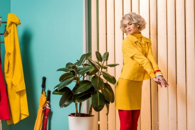 retro styled woman standing at ficus plant in flowerpot at colorful apartment, doll house concept
