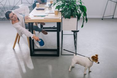 businesswoman holding jack russel terrier on leash and colleague sitting behind on table in modern office