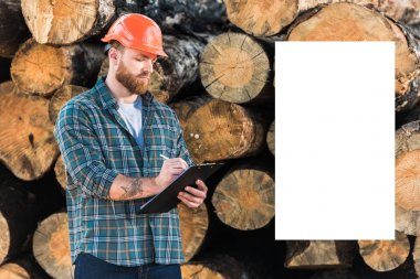 bearded lumberjack in protective helmet writing in clipboard and white empty copy space on logs background