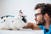 Seitenansicht des jungen, positiven Tierarztes beim Anblick des niedlichen, flauschigen Kaninchens