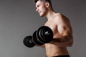 sexy muskulöser Bodybuilder mit nacktem Oberkörper beim Training mit Hanteln isoliert auf grau