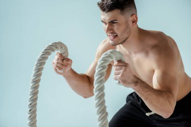 sexy muscular bodybuilder with bare torso exercising with battle rope isolated on grey