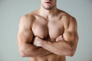 Cropped view of sexy muscular bodybuilder with bare torso posing with crossed arms isolated on grey stock vector