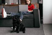 Selektivní zaměření legrační pug dog sedí u dívky s protézou nohy a notebook v obývacím pokoji