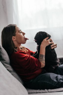 Side view of young woman sticking out tongue to pug dog on sofa