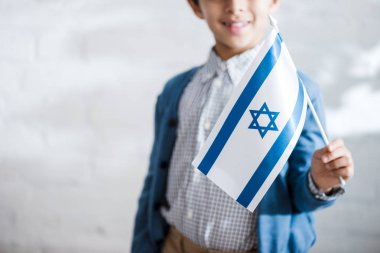Cropped view of smiling jewish boy holding flag of israel stock vector