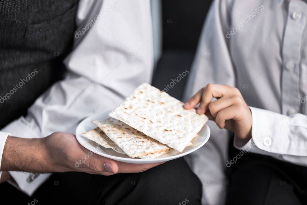 Cropped view of jewish father holding plate and son taking matza in apartment stock vector