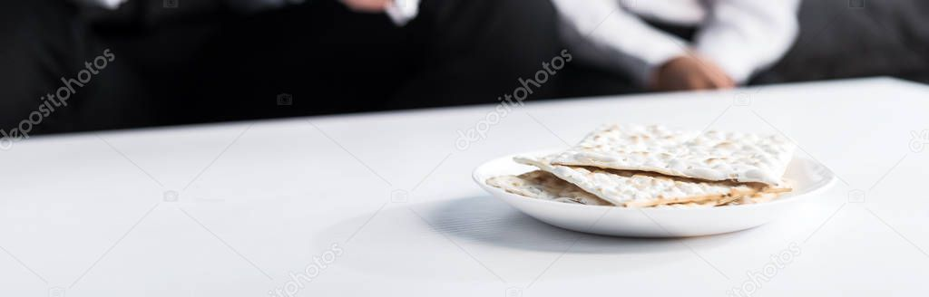 Panoramic shot of matza on plate, on wooden plate stock vector