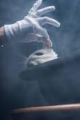 ostříhaný pohled kouzelníka v rukavicích s bílým králíkem z klobouku, v tmavé místnosti s kouřem