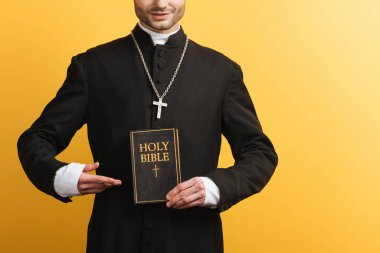 Cropped view of catholic priest pointing with finger at holy bible isolated on yellow stock vector