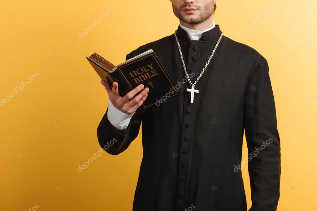 Cropped view of catholic priest reading bible isolated on yellow stock vector