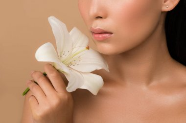 Cropped view of beautiful naked asian girl holding white lily isolated on beige stock vector