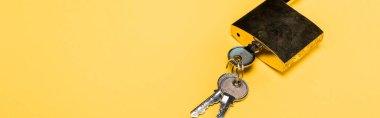 Panoramic shot of metallic padlock with keys isolated on yellow stock vector