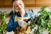 Photo selective focus of happy woman in gloves holding gardening scissors near green leaves