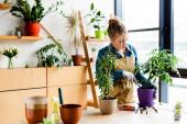 Fotografie atraktivní žena v rukavicích přesazování rostlina v květináči