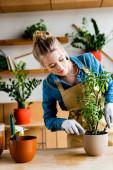 Fotografie krásná mladá žena v rukavicích drží malou lopatu a hrábě při transplantaci rostliny