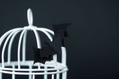 Photo selective focus of origami bat near metallic cage isolated on black