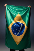 Fotografie back view of football fan holding brazilian flag on grey