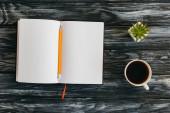 horní pohled na prázdný notepad, tužku, šálek kávy a šťavnatý na tmavém dřevěném povrchu