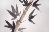 Japanese painting with bamboo and leaves on white background