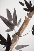 Japonská malba s bambusem a listy na bílém