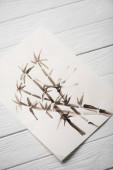 Top nézet a kép japán festészet bambusz fából készült háttér