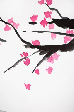 Japanese painting with Sakura branches with flowers on white background stock vector