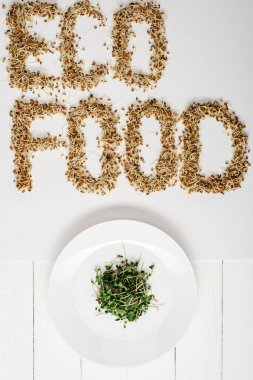 Top view of fresh microgreen on plate near eco food lettering made of sprouts on white wooden surface stock vector