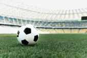 Fényképek focilabda füves focipályán a stadionban