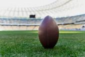 rugby míč na zelené trávě na stadionu s kopírovacím prostorem
