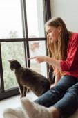 Selektiver Fokus einer jungen Frau, die mit dem Finger auf Fenster in der Nähe einer niedlichen Katze zeigt