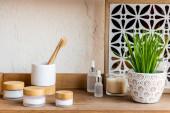 dřevěná police se zubními kartáčky, nádobami a láhvemi v blízkosti svíčky a zelené rostliny