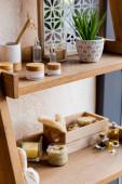 selektiver Fokus des Regals mit Kräuterbeutel, Luffa, Zahnbürste, Behältern und Flaschen in der Nähe der grünen Pflanze im Blumentopf