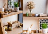 Fotografie Collage aus Weidenzweigen in Vase, Kräutertüten, Luffa, Zahnbürste, Kerzen, Gefäßen und Flaschen in der Nähe grüner Pflanzen im Blumentopf