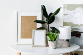 green plants, frames and lamp on white coffee table near painting in modern apartment