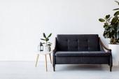 modern kanapé mellett dohányzóasztal növényekkel, vintage lámpa és fejszobor a nappaliban