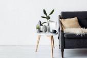 moderní pohovka s polštářem v blízkosti konferenčního stolku s rostlinami, vinobraní lampy a pohár v obývacím pokoji