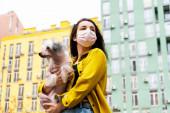 vonzó lány rózsaszín orvosi maszk séta kutya a városban
