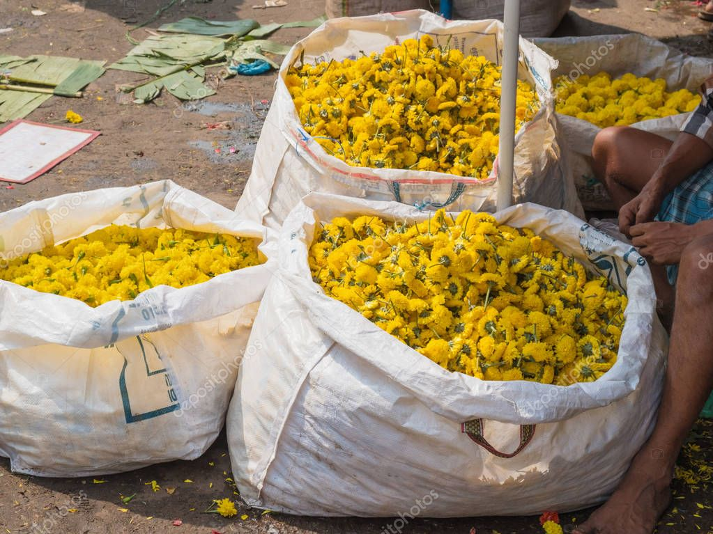 Marigold flower heads for sale at a  flower market in Tamil Nadu state, India