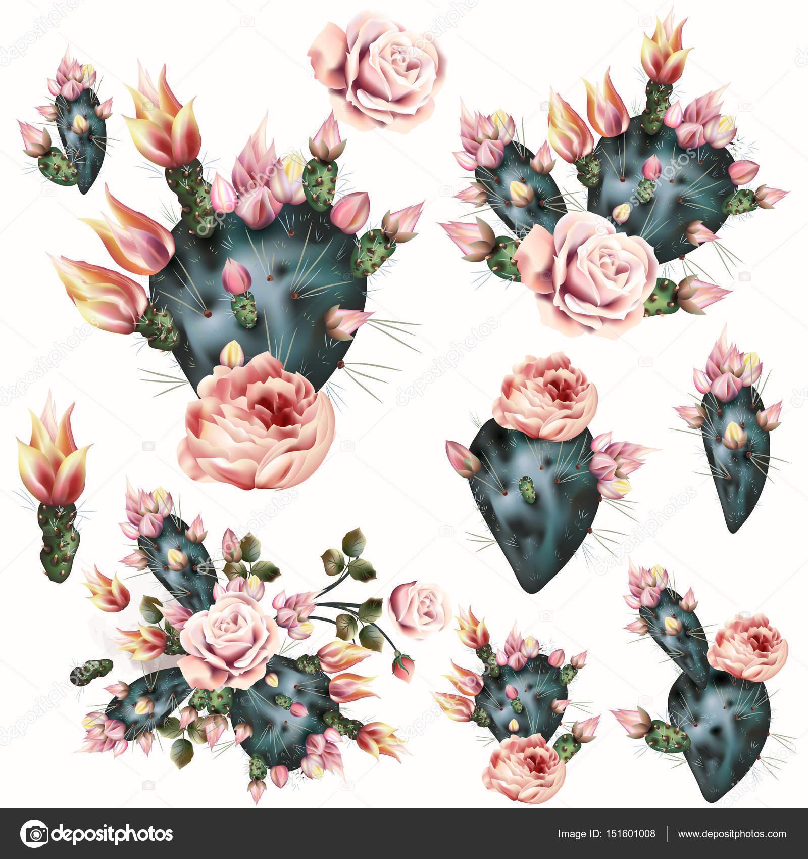 Dibujos Cactus Dibujo Realista Dibujo De Cactus Con Flores De