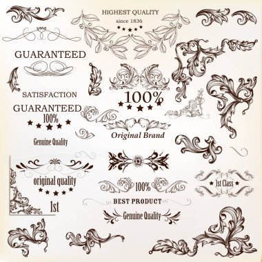 Calligraphic vector vintage design elements , decorations and sw