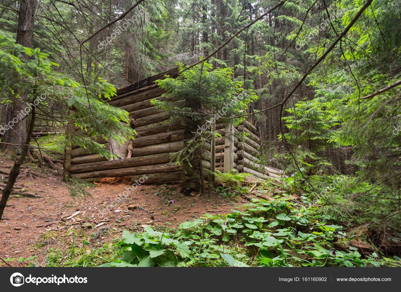 kleines verlassenes holzhaus im wald stockfoto york 76 161160902. Black Bedroom Furniture Sets. Home Design Ideas