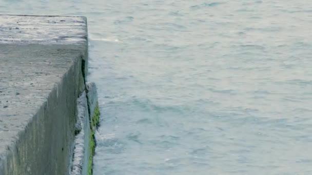 Wellenbrecher an der Meeresküste.