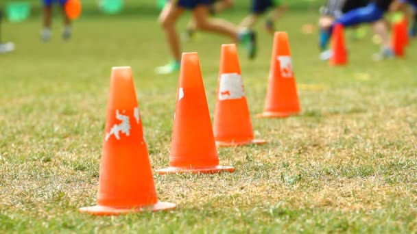 Cones on a soccer field