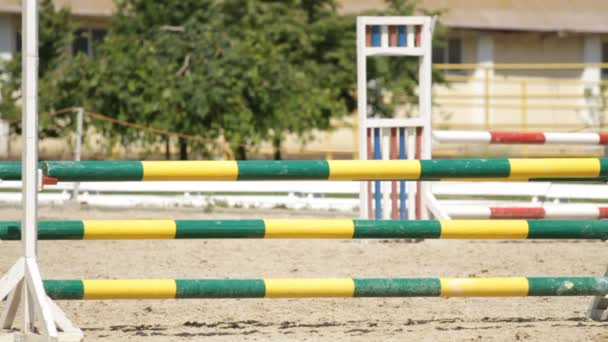Horse jumping on a hurdle