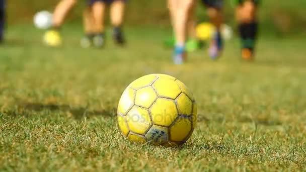 futball-labdát a füvön